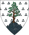 Argent, estencelé sable, an ash tree proper issuant from a mountain sable.